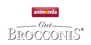 Brocconis Cat