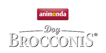 Brocconis Dog